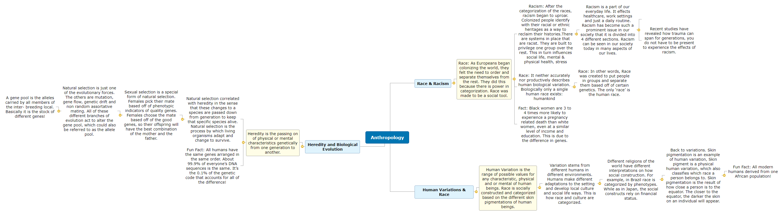 Anthropology Visual Study Guide OSU Mind Map