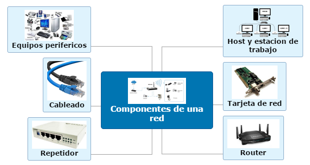 Compeonentes de una red Mind Map