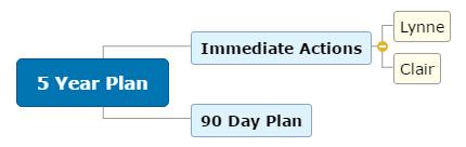 5 Year Plan1 Mind Map