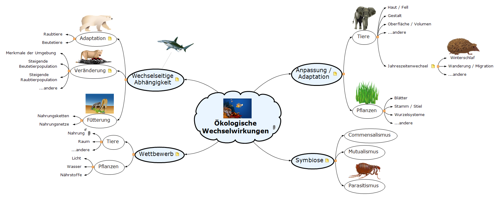 Ökologische Wechselwirkungen Mind Map