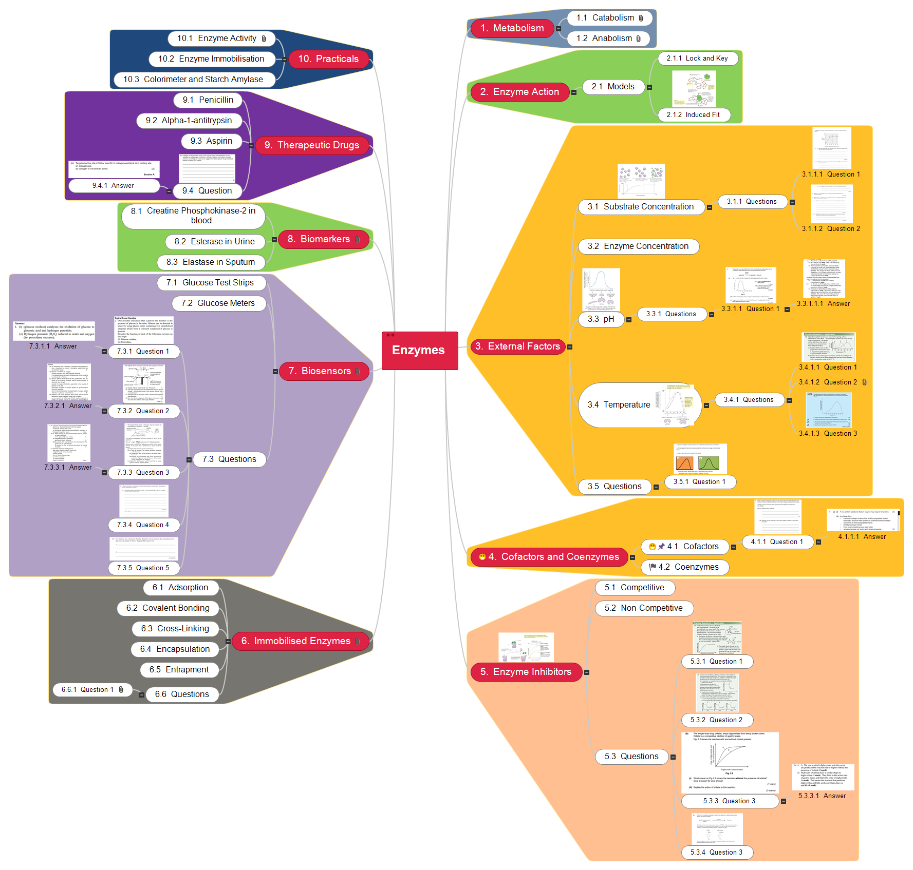 Enzymes2 Mind Map