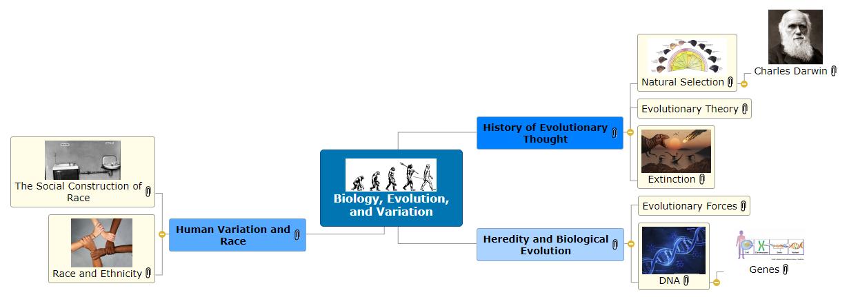 Biology, Evolution, and Variation Mind Map