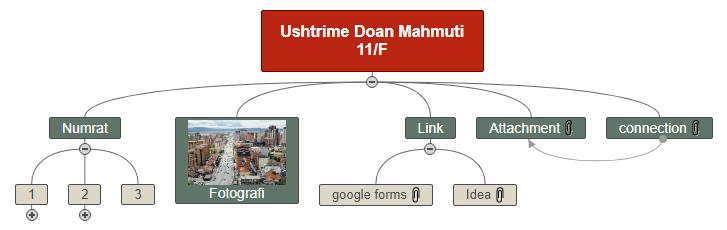 Ushtrime Doan Mahmuti 11_F Mind Map
