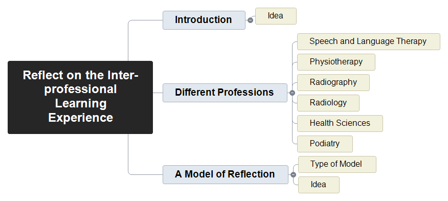 Reflect on the Inter-professional Learning Experience Mind Map