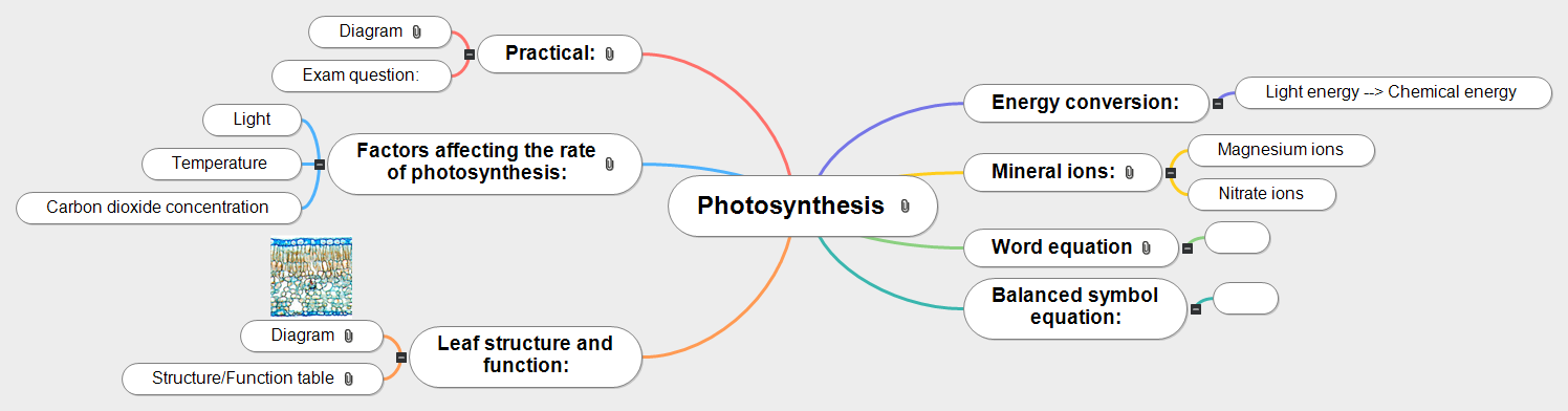 Photosynthesis for Year 10 Revision Mind Map