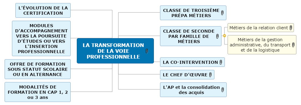 LA TRANSFORMATION DE LA VOIE PROFESSIONNELLE Mind Maps