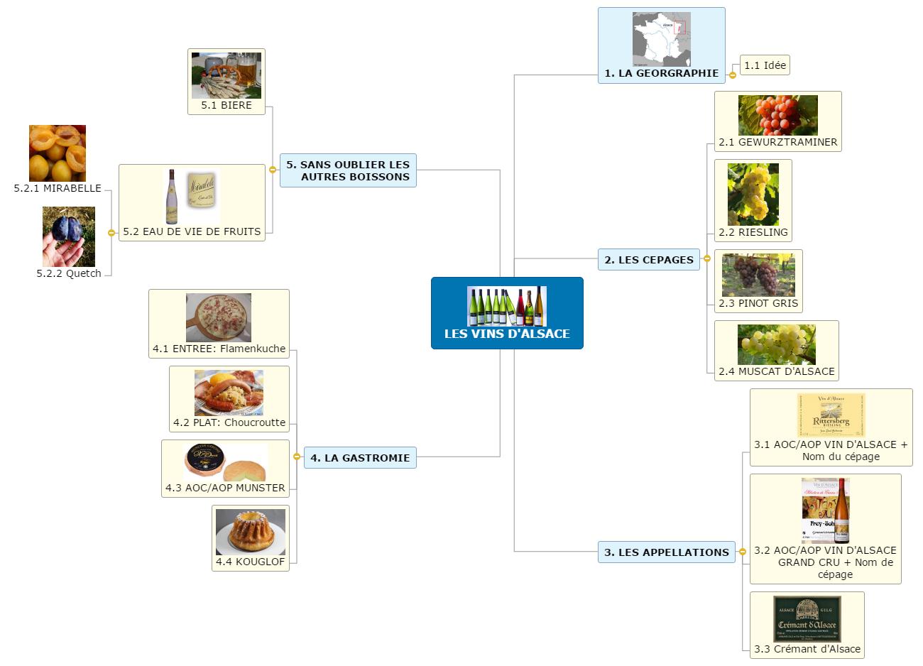 LES VINS D'ALSACE1 Mind Map