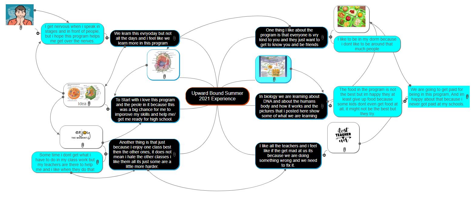 Upward Bound Summer 2021 Experience Mind Map