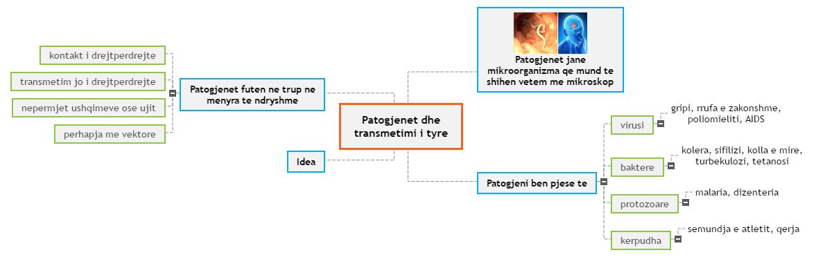 Patogjenet dhe transmetimi i tyre Mind Map