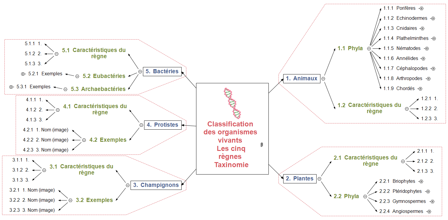 Taxinomie - Avancée Mind Map