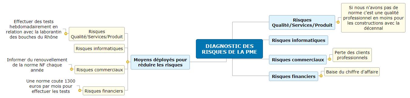 02-DIAGNOSTIC DES RISQUES DE LA PME-LIZZERI Mind Maps