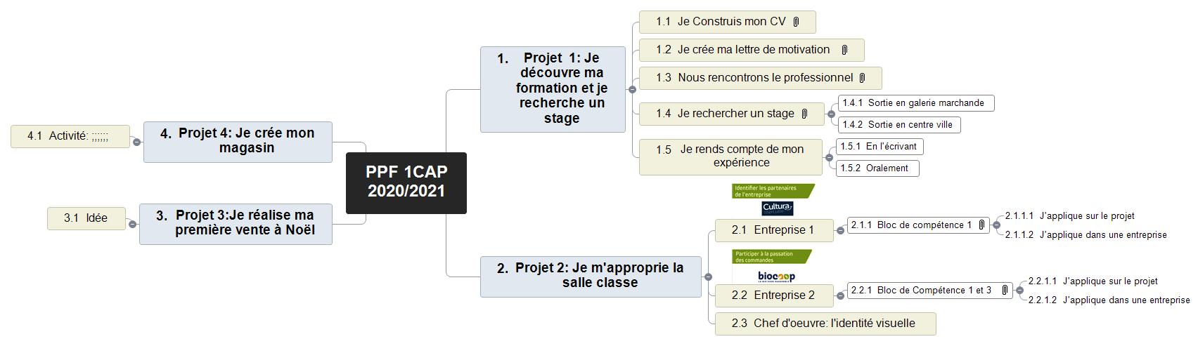 PPF 1CAP 20202021 (1) Mind Maps