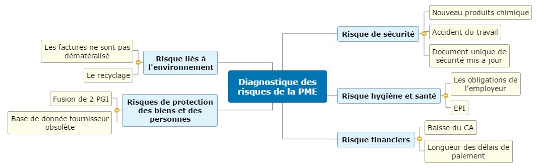 Diagnostique des risques de la PME Mind Maps