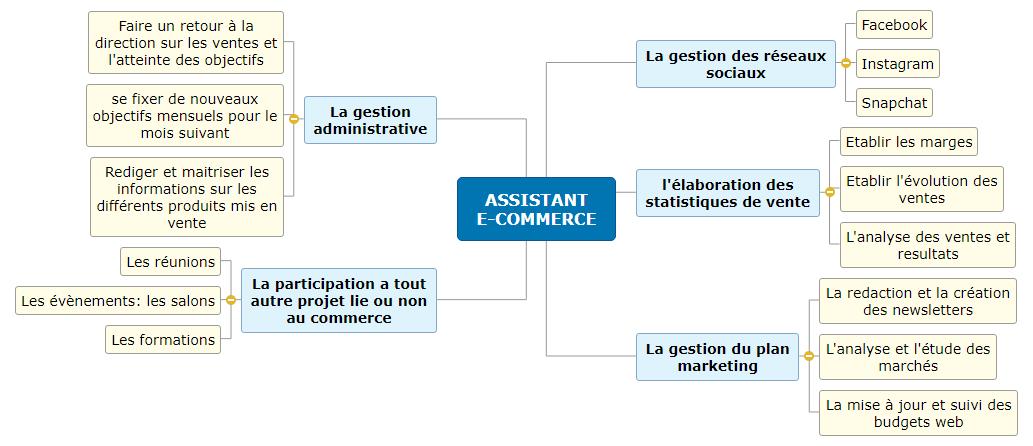 ASSISTANT E-COMMERCE2 Mind Map