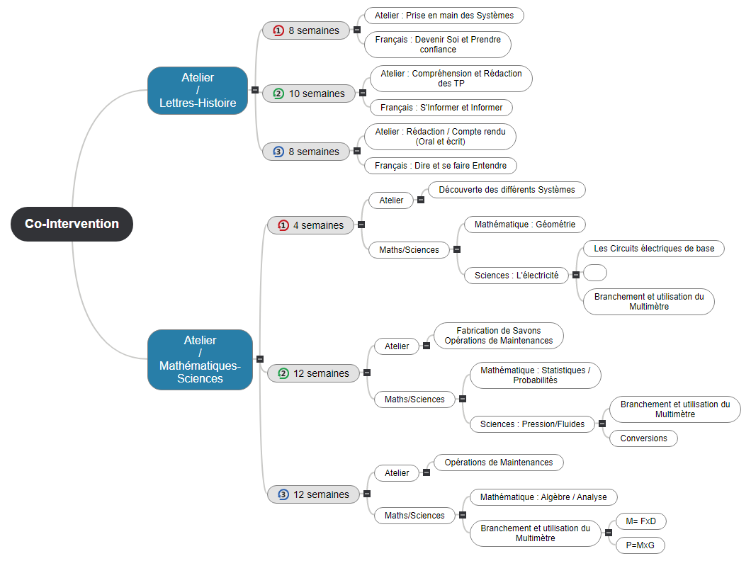 Exemple Co-Intervention(1) Mind Maps