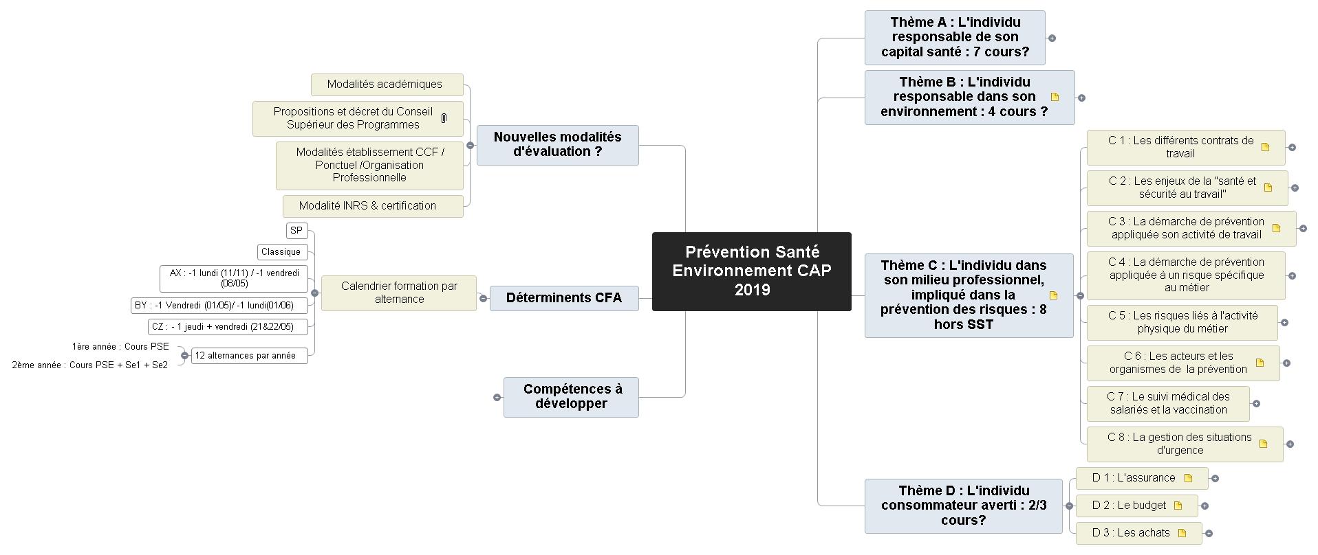 Prévention Santé Environnement - Ma stratégie session -Arnaud 2019-2020 Mind Maps