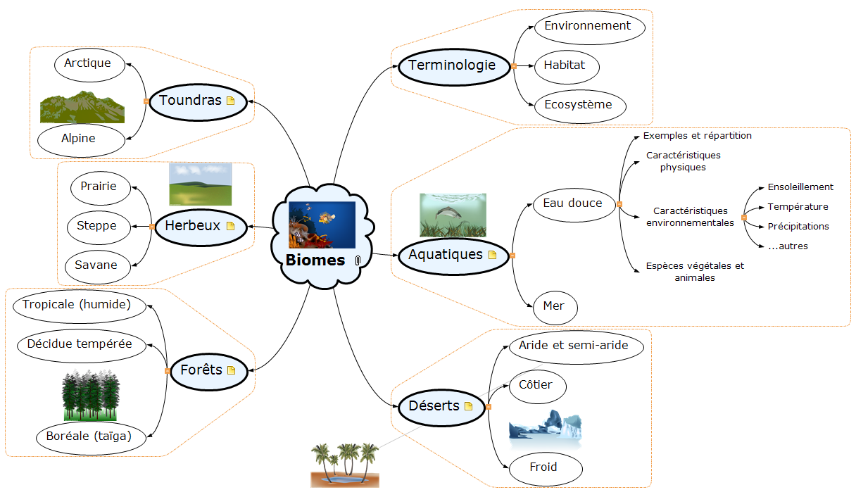Biomes Mind Maps