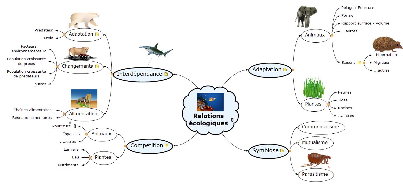 Relations écologiques Mind Maps