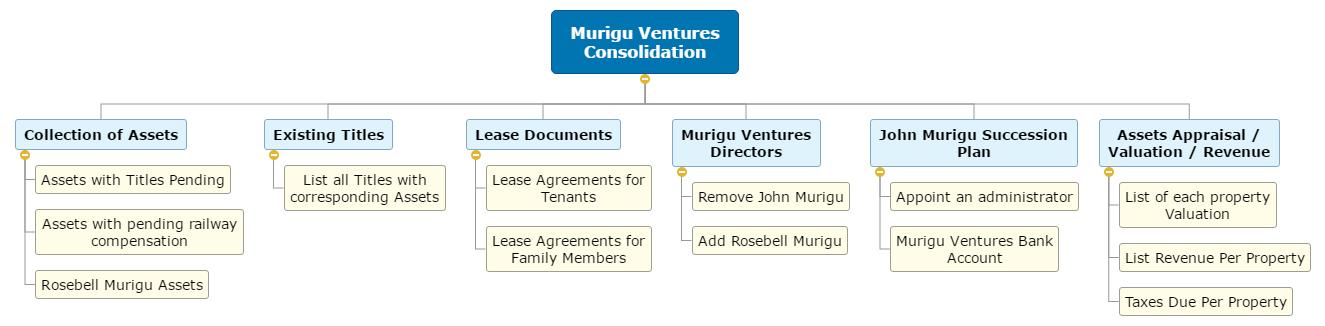 Murigu Ventures Consolidation1 WBS