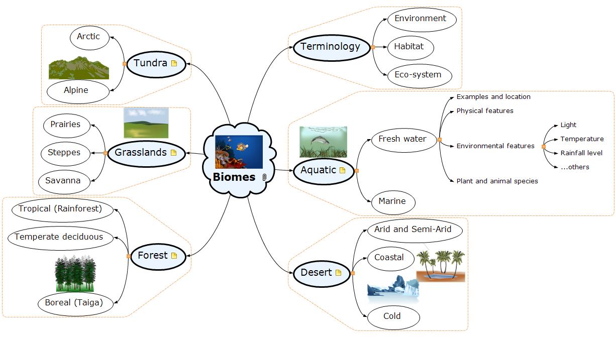 Biomes Mind Map