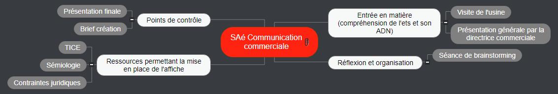 SAé Communication commerciale1 Mind Maps