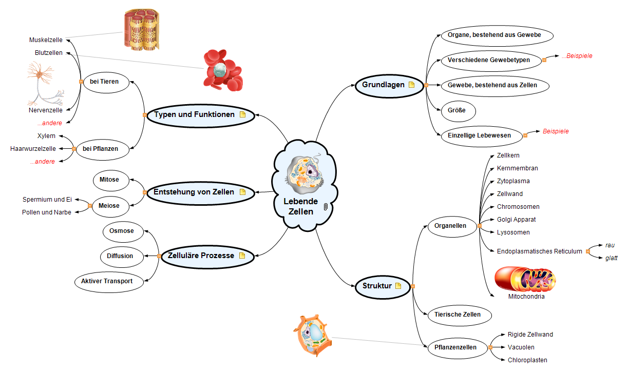 Lebende Zellen Mind Map