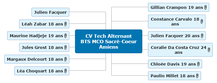 CV Tech Alternant BTS MCO Sacré-Coeur Amiens1 Mind Maps