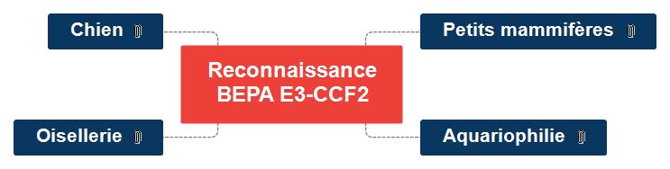 CM reco BEPA E3-CCF2 Mind Maps