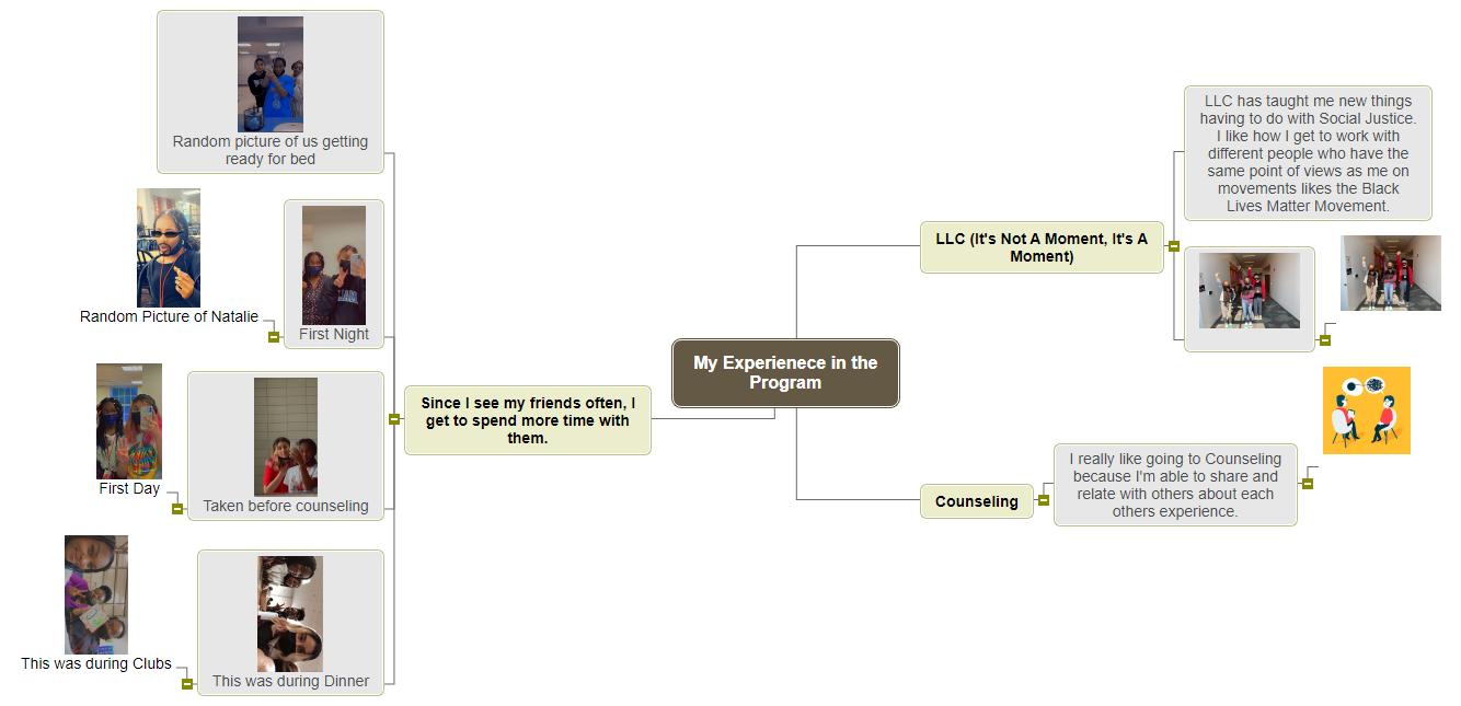 My Experienece in the Program- Sara Mondelus Mind Map