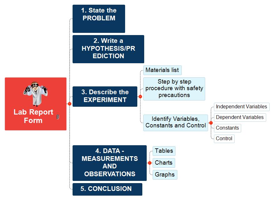 Lab Report Mind Map