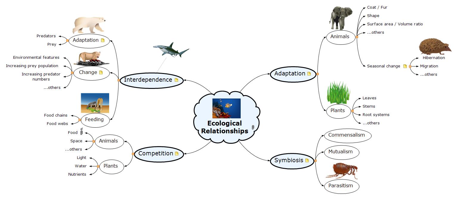 Ecological Relationships Mind Map