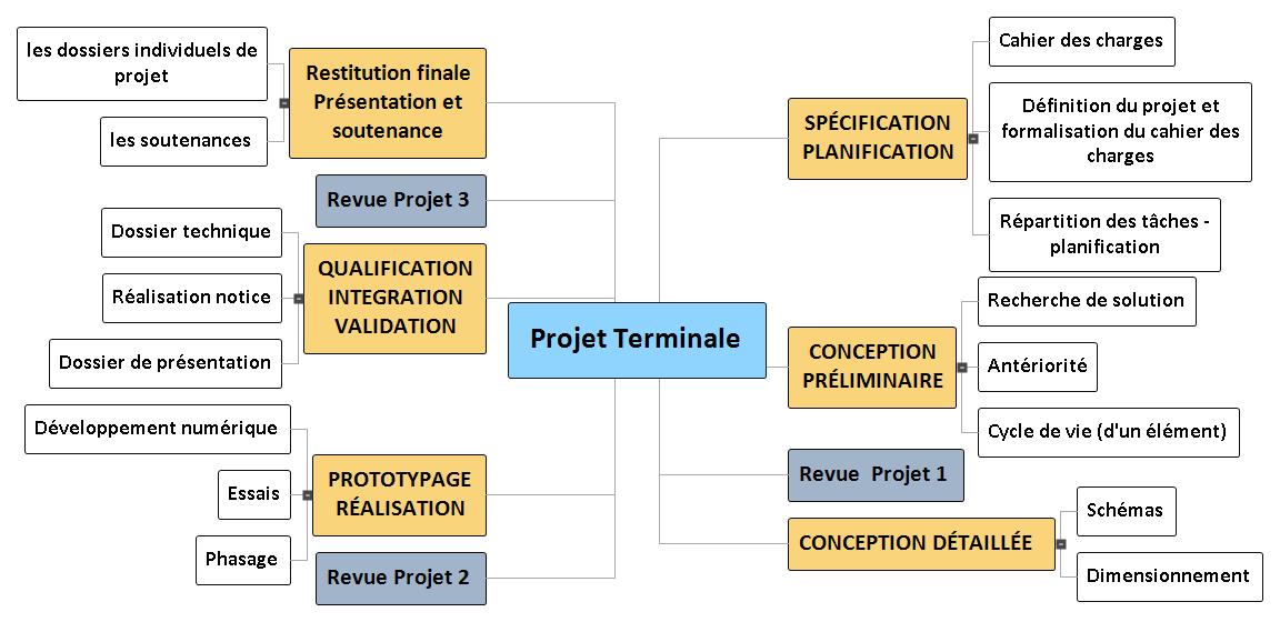 Projet Terminale Mind Maps