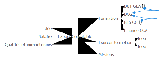 Expert-Comptable 1 Mind Map