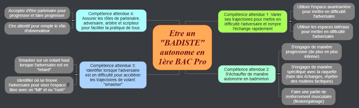 Etre un _BADISTE_ autonome en 1ère BAC Pro Mind Maps